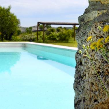 DSC_3212_piscina