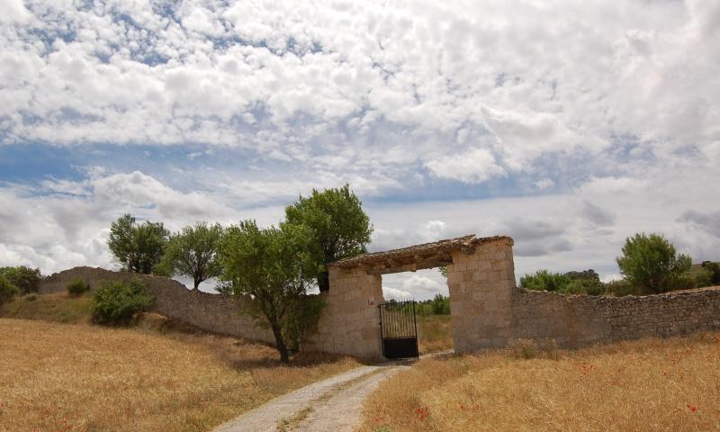 Portón y muralla
