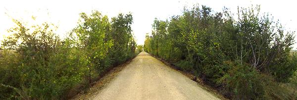 Vía verde_tren burra fincaelcercado