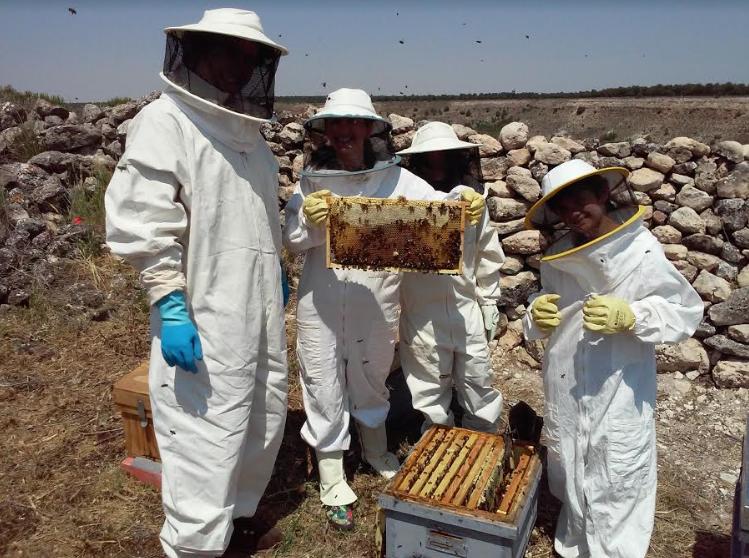 apicultura Palencia