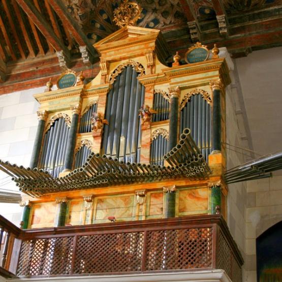 paredes-de-nava-organo
